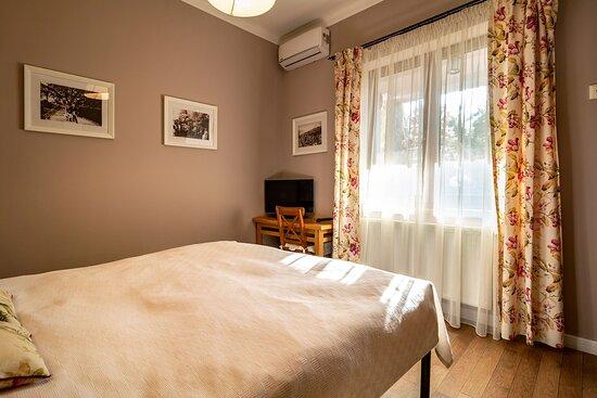 Dumitru D. Culcer's Room