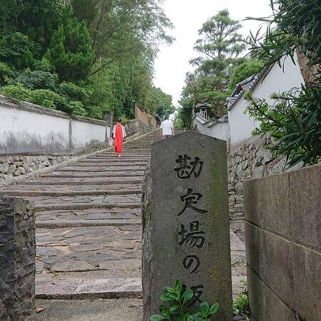 杵築城から城下町まで歩いて観光です。