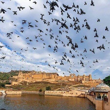 Paradise India Travel