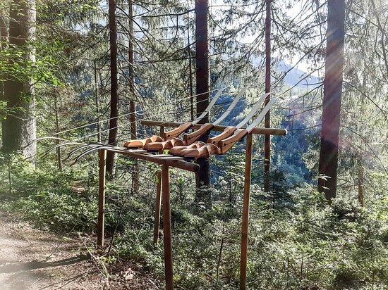 Bogen Jagd Alpendorf