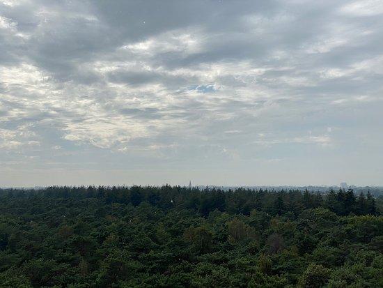 Mooie uitkijktoren met zicht op natuur en stad