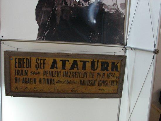 Çanakkale Kent Müzesi Ve Arşivi 10