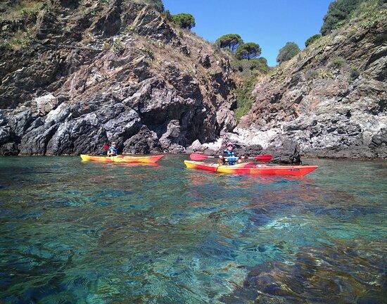 Banyuls-sur-mer, France: Balade en kayak de mer aux abords de Banyuls.