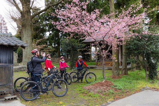 火山の恵みと阿蘇の文化を探るサイクリング・アクティビティ