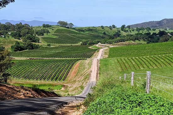 The Complete Hunter Valley Wine Tour of ...