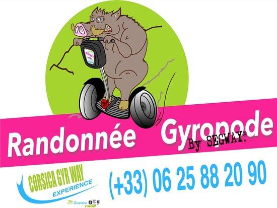 Gyropode Segway Cgwe