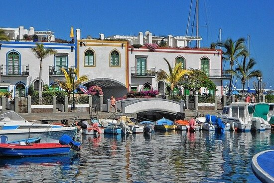 Private 8-hour Tour of Central and Southwest of Gran Canaria w/ Hotel...