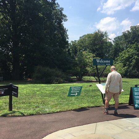 At Morris Arboretum