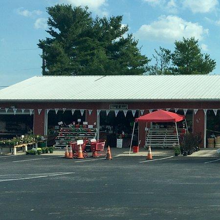 Rosie's Farm Market