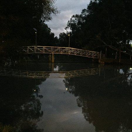 Lions Flora-Fauna Park