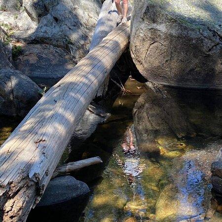 Logs, rocks over the creek