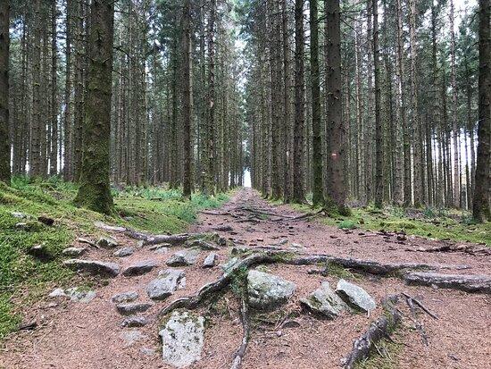 Espace Trail Des Monts De Guéret
