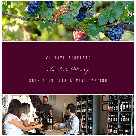Visit us! Let us welcome you for a Tour & a Wine Tasting of your choice. Monday to Friday - Contact us to Book  Visite-nos! Permite-nos que lhe receba para uma Visita & uma Prova de Vinhos à sua escolha. Segunda a Sexta - Contacte-nos para Reservar