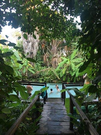 Fervedouro Macaubas. Jalapão/TO Foto: Guia de Turismo Tonia Valladares