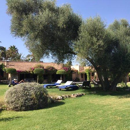 Manacor, Espanha: Der schöne Garten mit Pool. Nur für Hotelgäste.