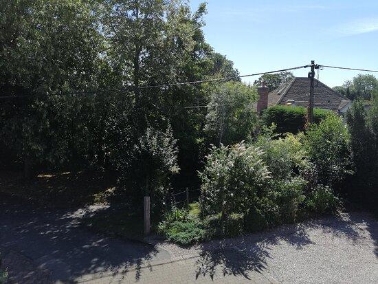 Front Garden 1 - July 2020