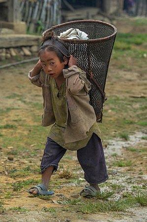 Nagaland 7
