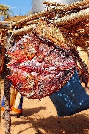 Mozambik: Mozambico 32
