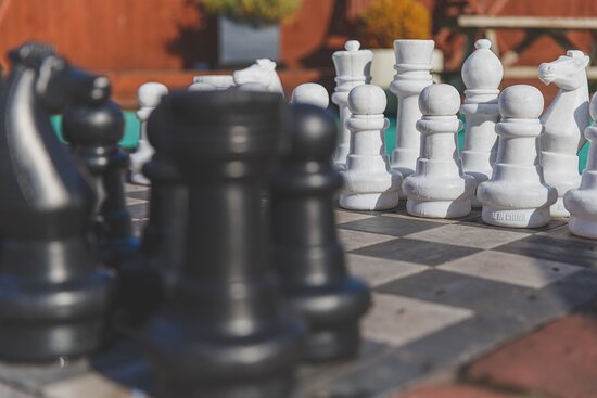 Giant Chess and Giant Jericho are just a few of the great games available in the games garden area of the site to keep kids entertained.