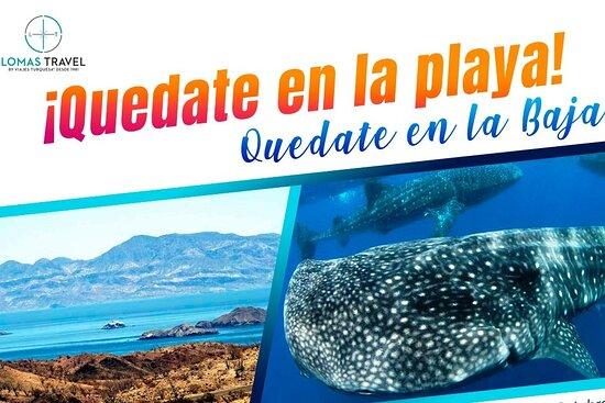 Lomas Travel Baja California
