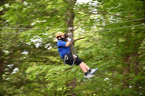 Recorrido por las copas de los árboles en la primera tirolina de Massachusetts: hi