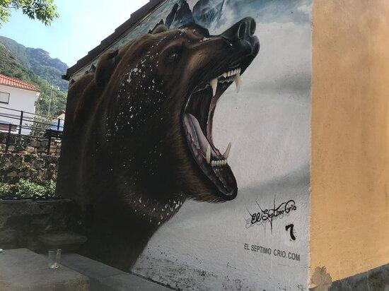 Somiedo Municipality, Spain: El oso es parte de la cultura de Pola de Somiedo