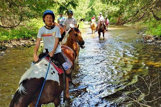 Fairbanks River Trail Rides