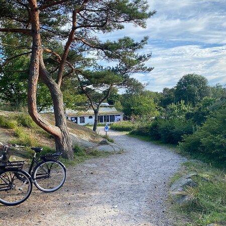 Zdjęcie Zachodnie Wybrzeże Szwecji