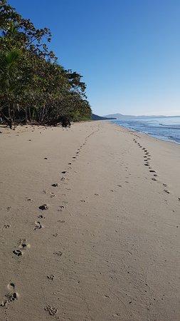 Bãi biển Newell, Úc: Beautiful Newell Beach