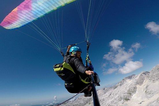 Flying Bear Tandem Paragliding