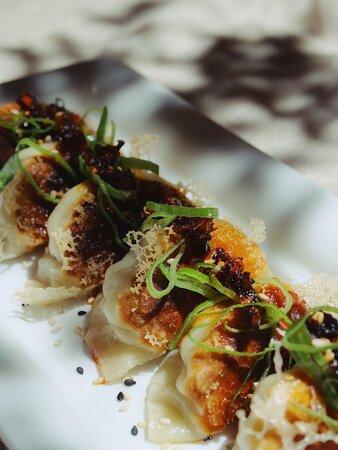 Carnon, Franciaország: Nos gyozas : des raviolis japonais aux goûts exquis !