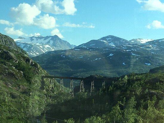 Artic Train