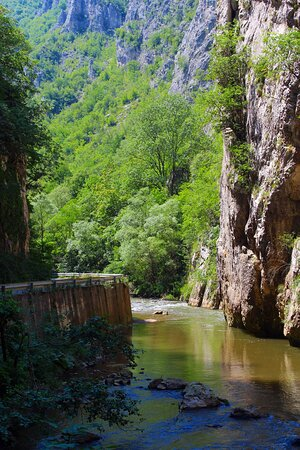 Poganovo, Serbie : The beautiful river and the canyon