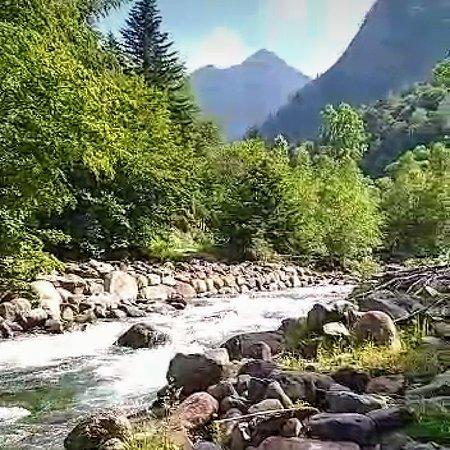 Provincia de Huesca, España: 🌲🌳🌿