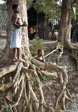 Sierra Leone: Sulima 7