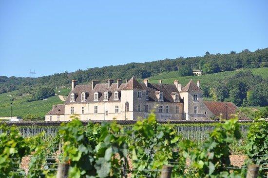 Visite privée de plusieurs jours des vignobles et du patrimoine