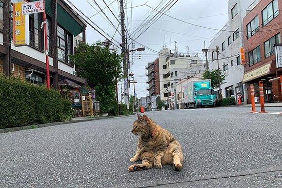 Yanaka Walking Tour