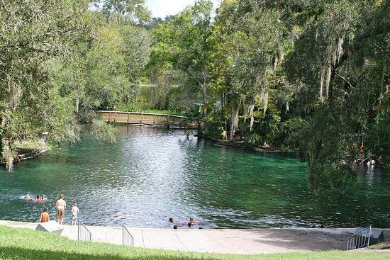 Swim Picnic at Wekiwa's Natural Springs!