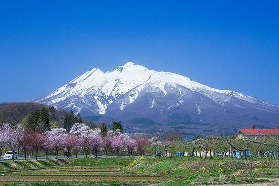 Aomori 1 Day Private Tour