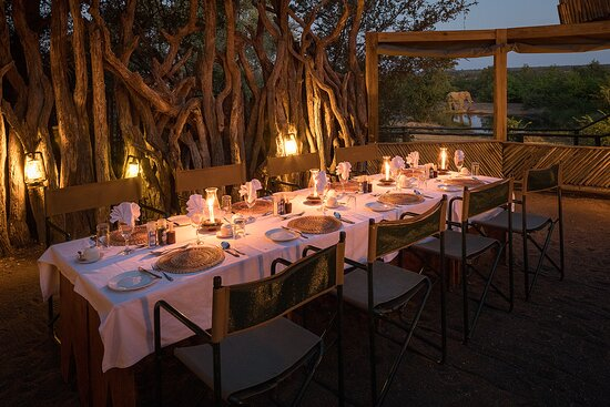 Mashatu Game Reserve, Botswana: Boma dinners under the stars