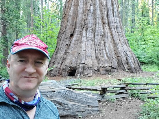 Me in front of the 2700 year Old Bull Buck tree. He was a seedling 600 years before Julius Caesar strode the world, 1600 years before Brian Boru fought at Clontarf, 2500 years before the US became a nation and 2700 years before I was adventurous enough to meet him
