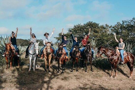 Visite privée à cheval à Santa Rita...