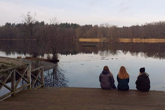 Small Group Excursion to Nacka Nature ...