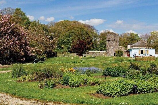 Jardines curativos y hierbas de la isla de Man (2 personas máximo)