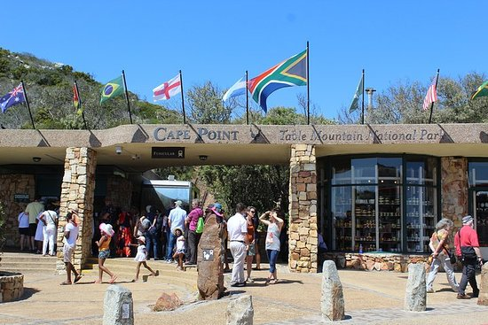 Full Day visit to Cape Point Cape of ...