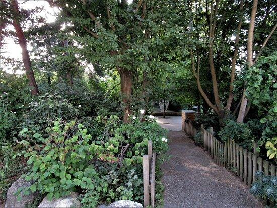 Jardin Berthe Morisot