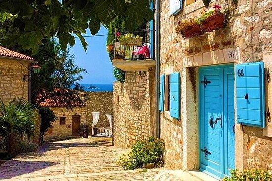 Degustazione di vino divino e olio d'oliva in Istria Tour privato di