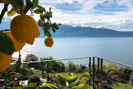day Trip from Verona to Lake Garda