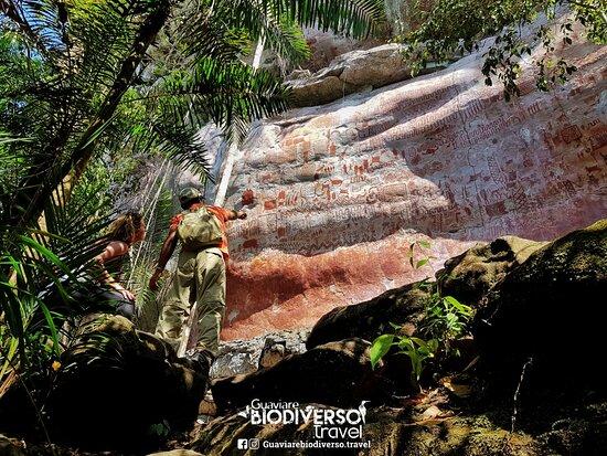San Jose del Guaviare, Kolumbien: Ven y disfruta de la mejor experiencia con la Naturaleza . ¡San José del Guaviare, un destino turístico  por descubrir!