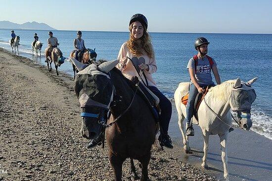 Promenade à cheval en Andalousie